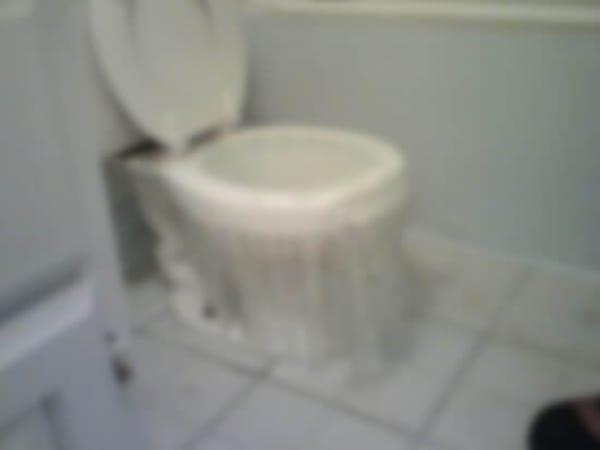 tuvalet neden taşar