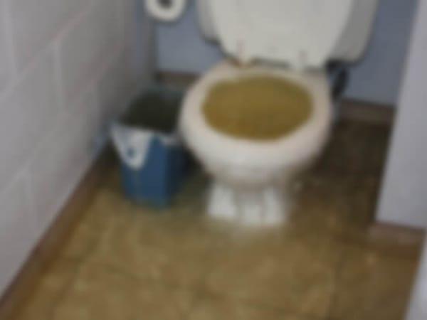 tuvalet taşması